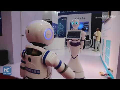 Xinhua's robot reporter Inspire talks with its robot friend in World Robot Conference