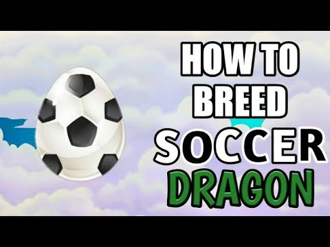 Breed Soccer Dragon In Dragon City Easily