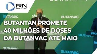 Butanvac: Instituto Butantan promete produzir 40 milhões de doses da vacina brasileira