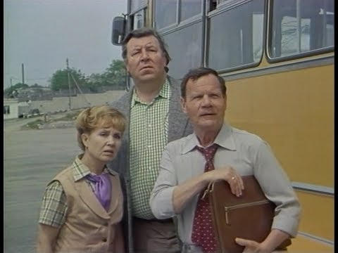 Женатый холостяк (фильм 1982)
