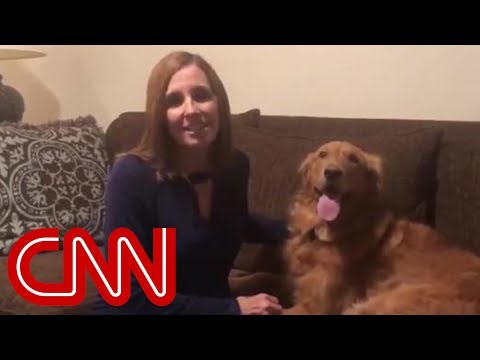 Nick Cash - Losing AZ Senate Candidate's Dog Video Goes Viral
