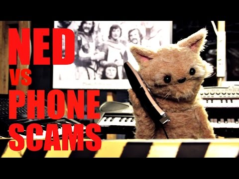 This Cat is NED - EP39 - Ned vs Phone Scams