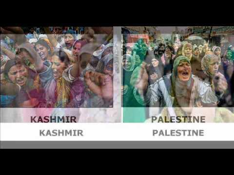 Palestine & Kashmir.wmv