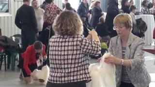 Смотреть видео Моно мальтезе 2018, Санкт-Петербург онлайн