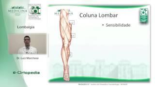 Ortopédica lombalgia almofada para