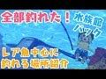 【ドラクエビルダーズ2】水族館パック レアな魚が釣れる場所【DQB2】