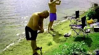 Рыбалка в Болгарии. Июль. Сазан, окунь, раки... ракийка #2(Рыбалка в Болгарии. Июль. Сазан, окунь, раки... ракийка., 2014-11-19T03:49:00.000Z)