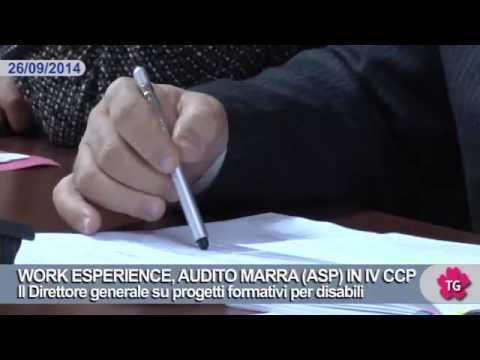 WORK ESPERIENCE, AUDITO MARRA (ASP) IN IV CCP