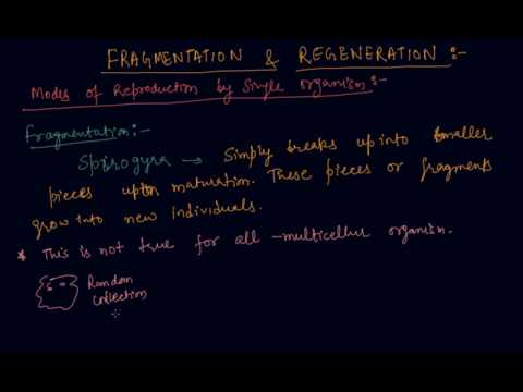 Fragmentation and Regeneration | Class 10 Biology How do Organisms Reproduce