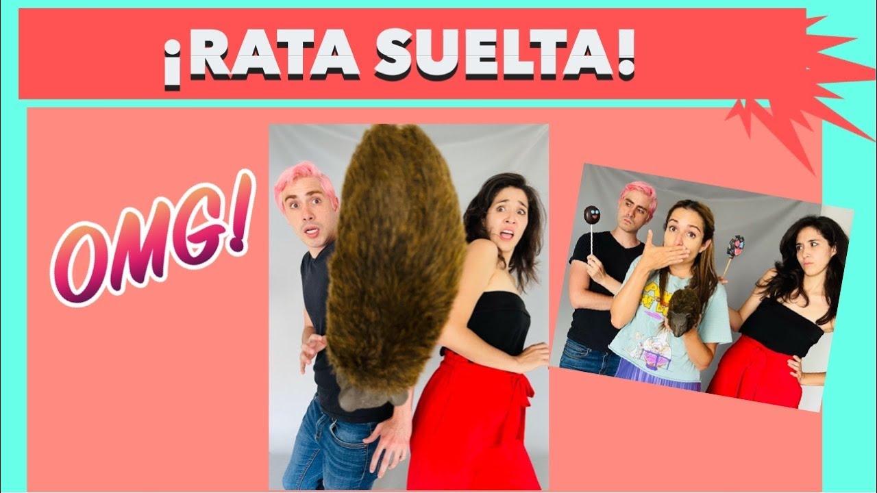 Download Rata suelta 🐀😱