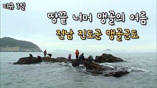 [다큐3일] 땅끝 너머 맹골의 여름, 전남 진도군 맹골군도 by KBS광주