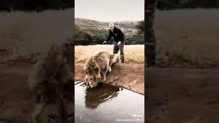 Manusia Bersahabat Dengan Hewan