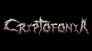 """FRECUENCIA EXTREMA  (El tema del """"POGO"""")  CRIPTOFONIA"""