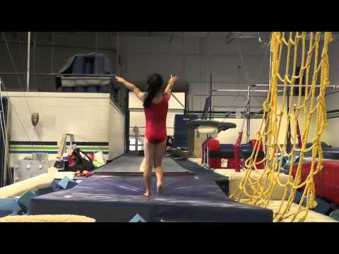 Hawaiian Island Twisters Gymnastics - 1151 Mapunapuna St. D3 Honolulu, HI 96819