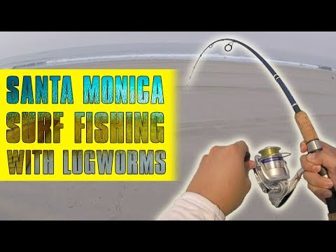 Santa Monica Surf Fishing with Lugworms 09-02-17