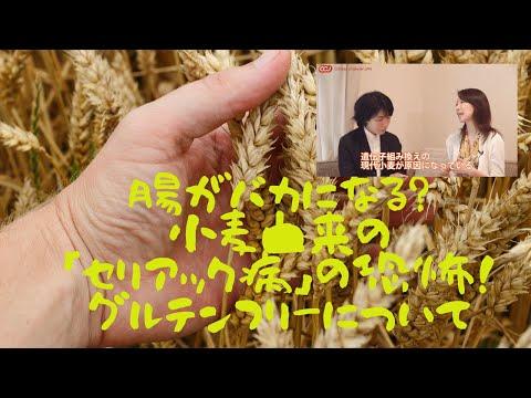 腸がバカになる?小麦由来の「セリアック病」の恐怖!グルテンフリーについて詳しくお聞きしました。