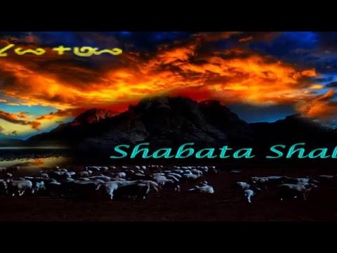 Children of Israel: Great Awakening!