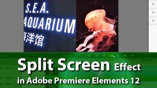 How to Create Split Screen Effect | Adobe Premiere Elements Training #8 | VIDEOLANE.COM