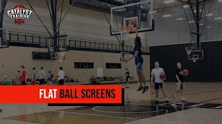 Continuous Flat Ball Screens