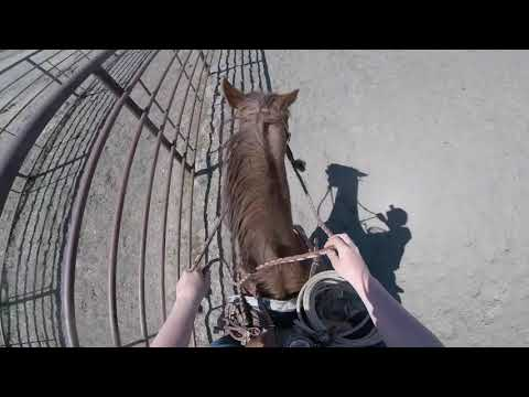 Ink Cruises The Outdoor Arena - Ride 12