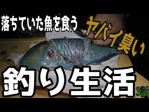 所持金0円で釣り生活 3話 【津堅島編 サバイバル】