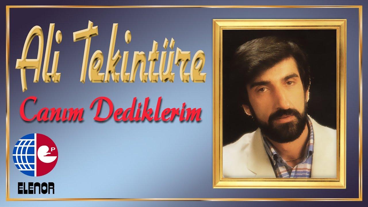 ALİ TEKİNTÜRE feat ADNAN TAYFUN - GEÇ KALDIM
