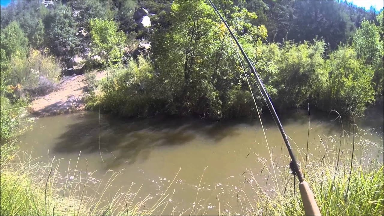 East Verde River, Fish On! - YouTube