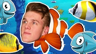 THE LIFE OF A FISH!