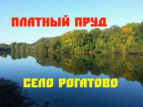 Платный Пруд в село Рогатово