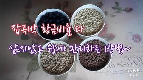잡곡밥 제대로 알고 드시나요~,mixed rice,#83