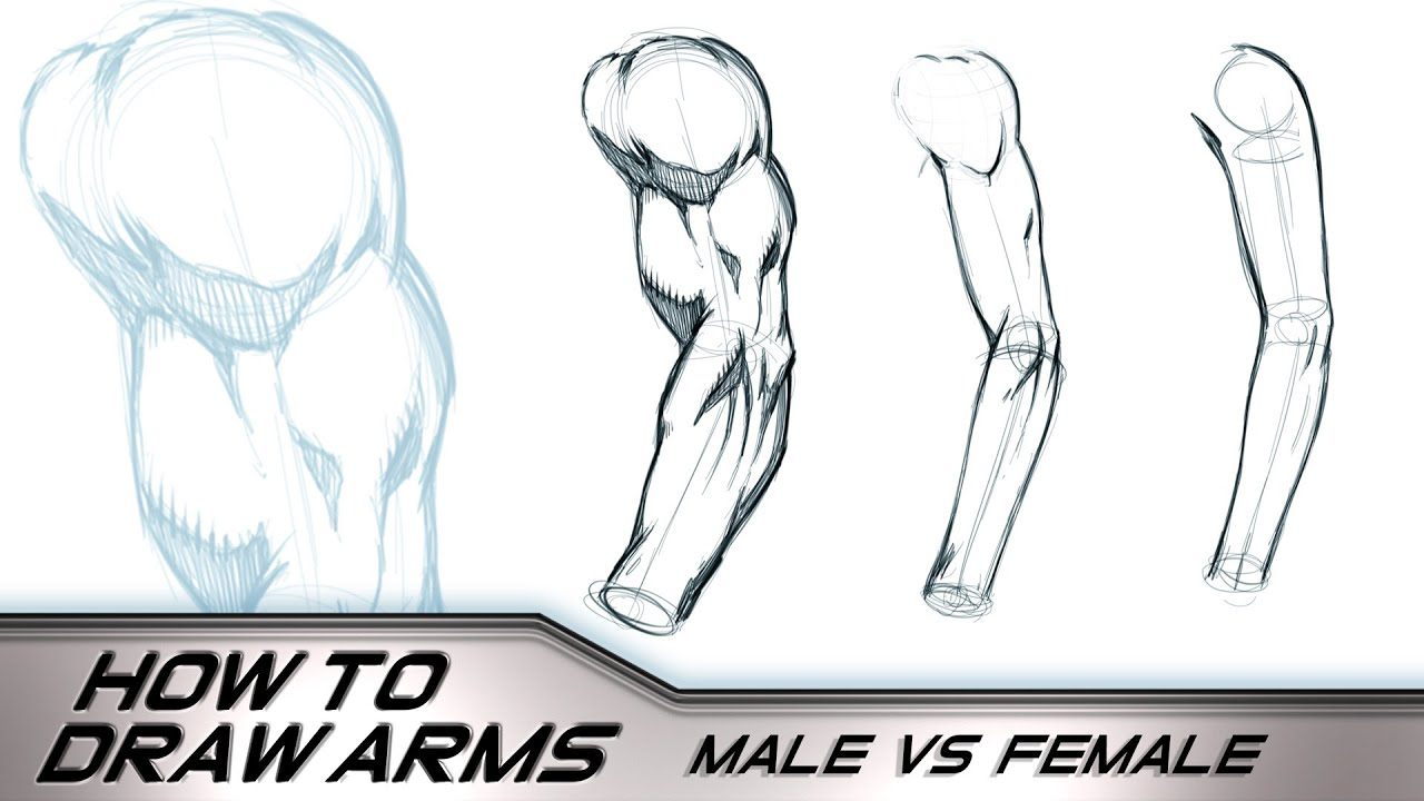 How to Draw Arms Male Vs Female - YouTube