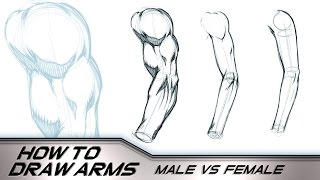How to Draw Arms Male Vs Female