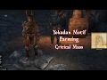 Aedra's Cove How to Farm Yokudan Motif -  Critical Mass