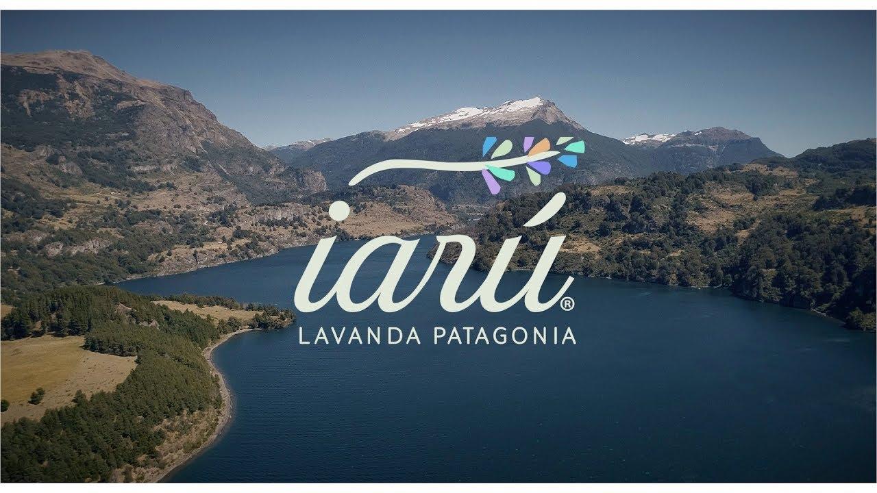 Micro Documental Iarú Lavanda Patagonia
