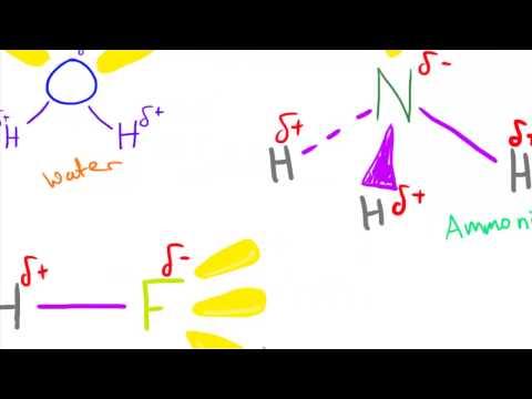 Hydrogen Bonding - AS Chemistry