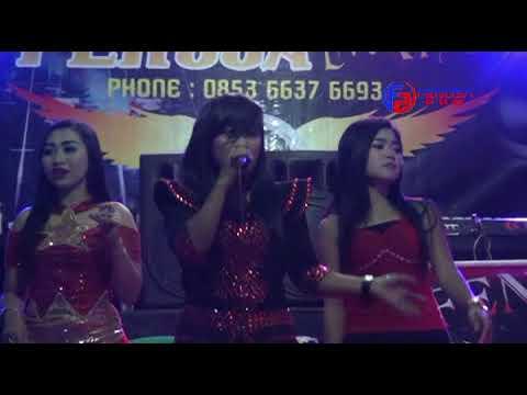 FENOSA live music_ all artis jaran goyang