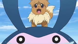 eevee-stranded-at-sea-pokmon-the-series-sun-moon-ultra-legends-short