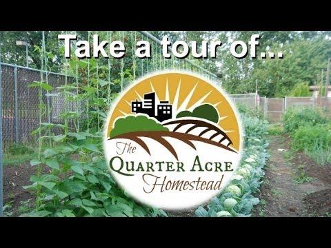 Quarter Acre Homestead Tour
