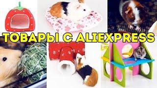 Интересные Товары с AliExpress для Морских Свинок, Хомяков, Крыс