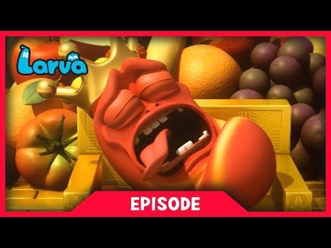 LARVA - NIGHTMARE | Cartoon Movie | Cartoons For Children | Larva Cartoon | LARVA Official