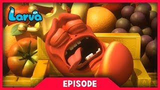 LARVA - NIGHTMARE | Cartoon Movie | Cartoons For Children | Larva Cartoon | LARVA Official