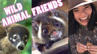 GOOFY WILD ANIMAL FRIENDS