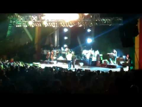 Buju Banton + Wayne Wonder + Shaggy + Serani live at Before The dawn Concert @Miami