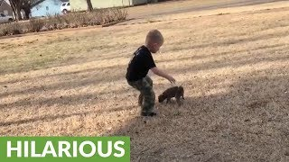 Kid hilariously struggles to pick up elusive puppy