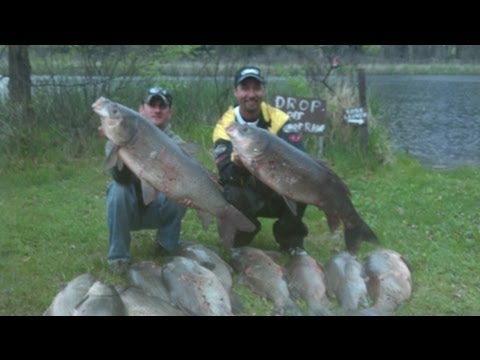 Bowfishing for Monster Buffalo and Carp