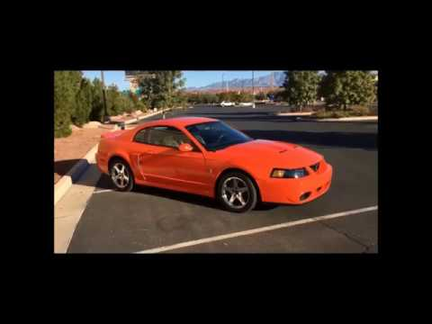 03 vs 04 Cobra: What's the difference between the two years of the terminator Cobra?