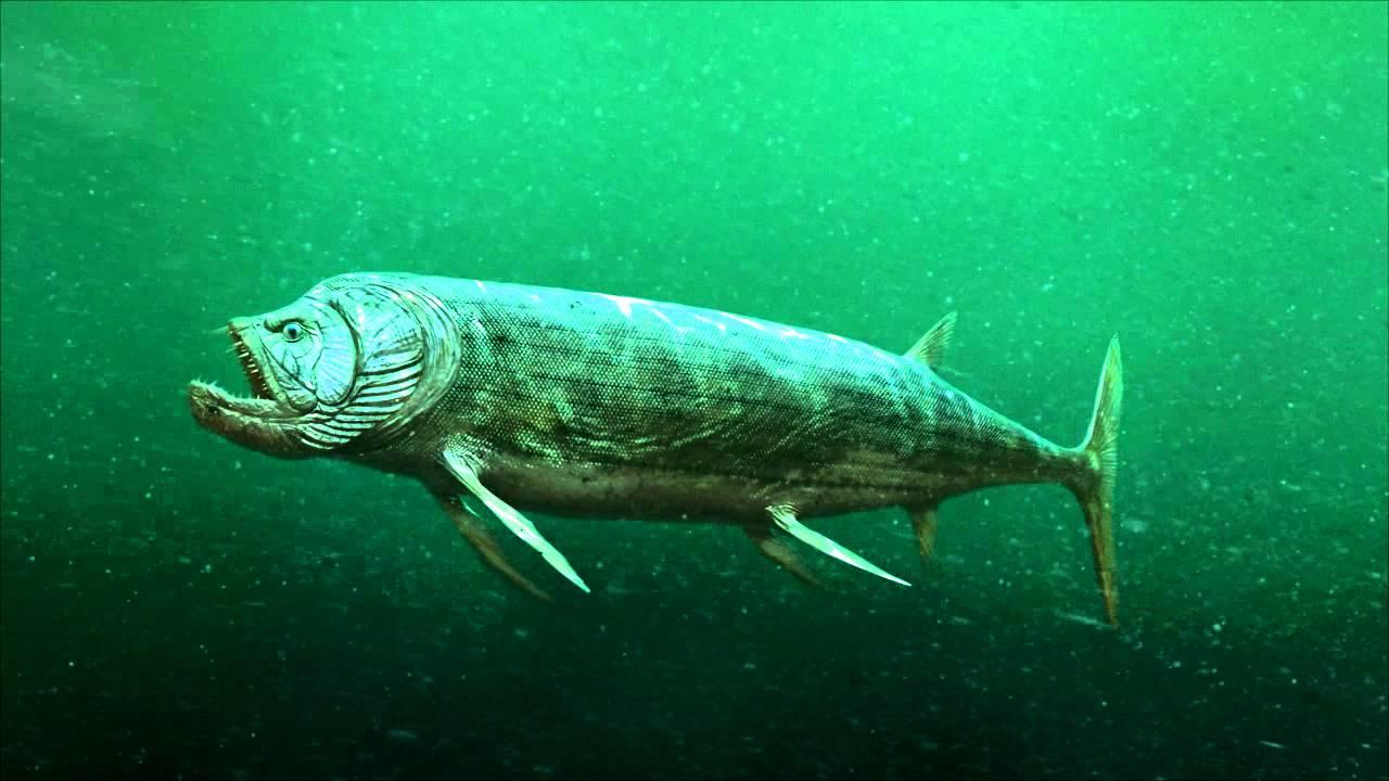 Xiphactinus swim cycle - YouTube