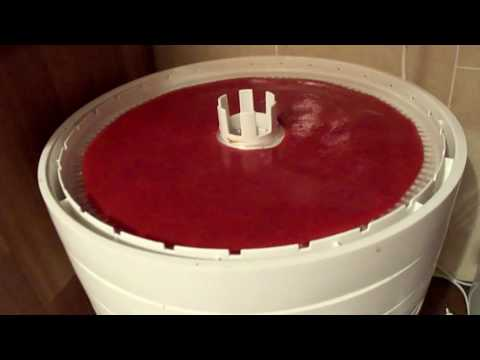 Пастила из клубники в электросушиВолтера1000! The sweetness of strawberries!