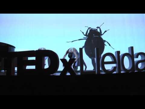 Insectum   David Pradas   TEDxLleida