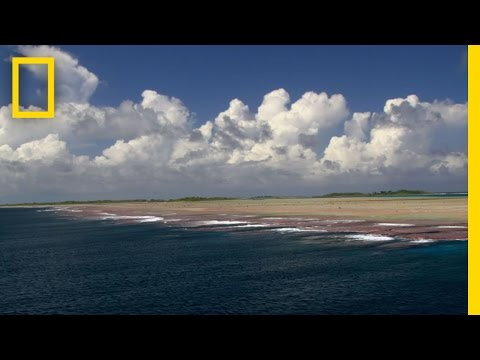 Pristine Seas Efforts Inspire Protection of Untouched Reefs | National Geographic